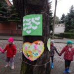 drzewoi_2016_014